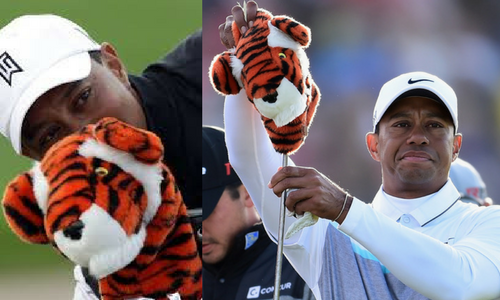 Tiger wood's headcover.png