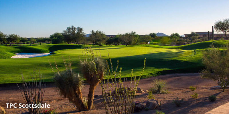 Best Public Golf Courses in Phoenix